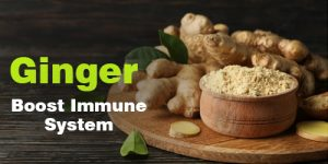 Ginger Help to Boost Immune System