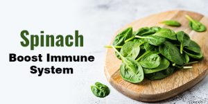 Spinach Boost Immune System