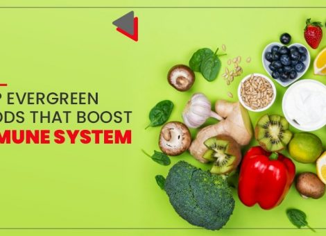 Top Evergreen Foods That Boost Immune System